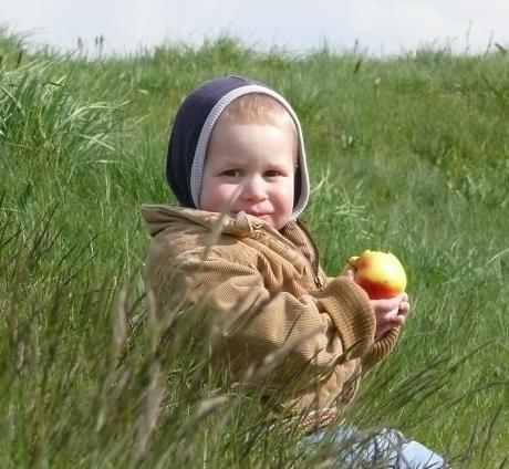 apaval a fűben, Kampen (5)