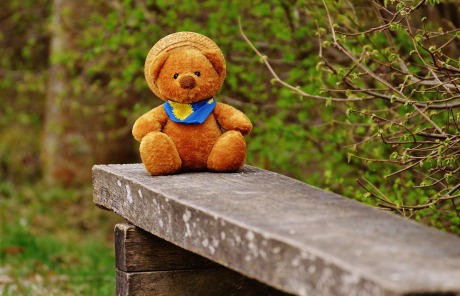 teddy-1311603_1920